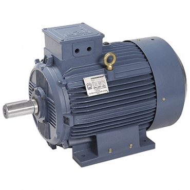 Ww electric motors for Discount motors in madison